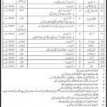 Govt Organization Job, Stenotypist, Library Assistant, Clerk On 14 May 2013
