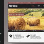 Radial – Creative Blog & Portfolio WordPress Theme