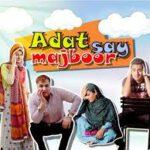 Watch Online Adat Say Majboor Episode 8 By Ary Digital 6th June 2013