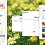 Codecanyon Masonry Tube WordPress Plugin