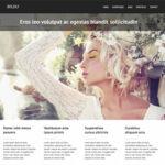 Strongly v1.7. ThemesKingdom Portfolio WordPress Theme