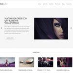 Chililight v1.5 – ThemesKingdom Business WordPress Theme