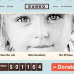 Danko v1.5 – ThemesKingdom Business WordPress Theme