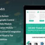 Qualia v3.1 – Themeforest Flexible Multi-Purpose Theme